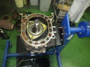 Imgp1523